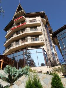 Hotel Arca lui Noe, Hotel  Sinaia - big - 32