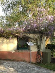 Agriturismo Il Pallocco, Farm stays  Montecastrilli - big - 103
