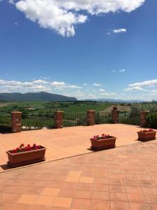 Agriturismo Il Pallocco, Farm stays  Montecastrilli - big - 102
