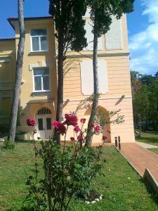 Hotel Vila Ružica - depandanse, Отели  Цриквеница - big - 11