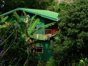 Mariposa Bed and Breakfast Monteverde