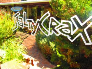 obrázek - Saltycrax Backpackers and Surf Hostel