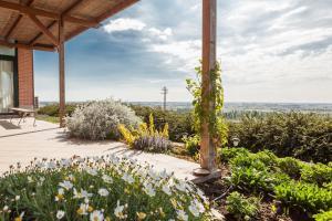 Agriturismo Le Bianchette - Villafranca di Verona