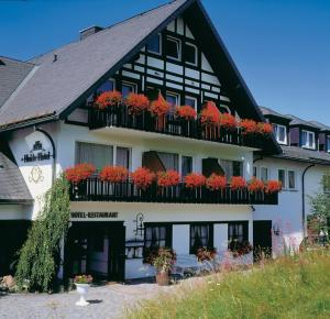 Heidehotel Hildfeld - Hotel - Winterberg
