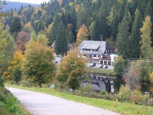 Klosterweiherhof - Ibach