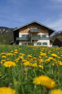 Landhaus Perllehen - Hintergern