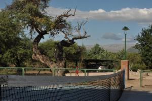 Colina del Valle, Hotely  Mina Clavero - big - 19