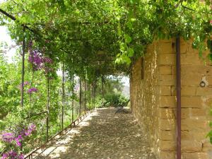 Casa Migliaca, Farm stays  Pettineo - big - 36