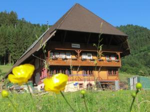 Wäldebauernhof - Gutach
