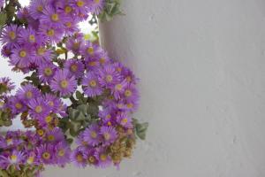 Sourmeli Garden Hotel, Hotel  Città di Mykonos - big - 24