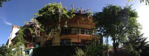 Hostels und Jugendherbergen - Casanova Inn