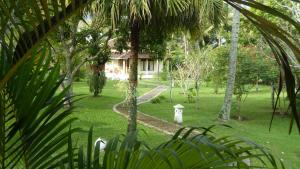 Rumah Kita Guesthouse, Penziony  Kalibaru - big - 26