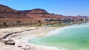 Aloni Neve Zohar Dead Sea, Appartamenti  Neve Zohar - big - 1