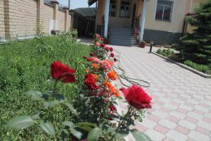 Auberges de jeunesse - The Zhibek-Zholu Guest House