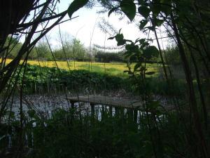 Ferienwohnung Hyggebo - Grundhof