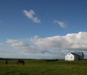 By the Lighthouse - Reykjavík