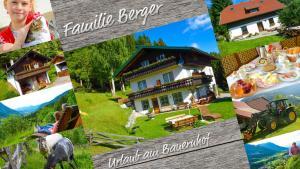 obrázek - Gästehaus Berger - Priglhof