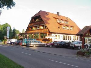 See-Hotel Storchenmuehle - Bergbronn