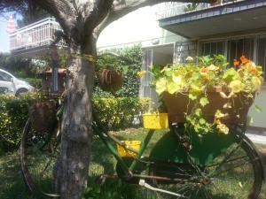 A Casa di Ely - AbcAlberghi.com
