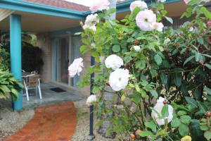 Beaches Serviced Apartments, Aparthotels  Nelson Bay - big - 53