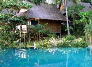 The Narima - Ban Khlong Hoi Khong