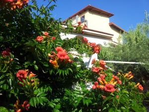 Casa Mastrissa, Apartmanok  Taormina - big - 1