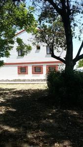 La Casa in Campagna, Agriturismi  San Martino in Pensilis - big - 17