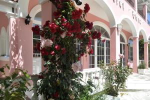 Hotel Elena Ermones, Hotely  Ermones - big - 33