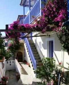 Chiliadromia Studios, Apartments  Alonnisos Old Town - big - 21