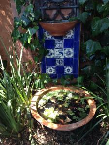 Jerningham Street Cottage, Bed and breakfasts  Adelaide - big - 10
