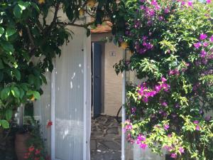 Casa Indipendente 50 Metri Dal Mare - AbcAlberghi.com