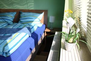 Pension an der Werft, Guest houses  Rostock - big - 5