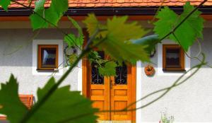 Weingut Dietl, Appartamenti  Riegersburg - big - 94