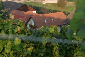 Weingut Dietl, Appartamenti  Riegersburg - big - 76