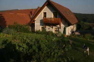 Weingut Dietl, Appartamenti  Riegersburg - big - 63