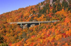 Hampton Inn Asheville-Tunnel Road, Szállodák  Asheville - big - 19