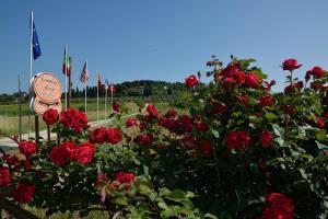 obrázek - Country Resort Il Frassine