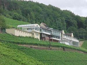 Panorama Hotel und Restaurant Schloßberg - Dettingen am Main