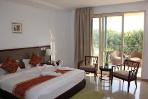 Soluxe Cairo Hotel, Hotels  Cairo - big - 30