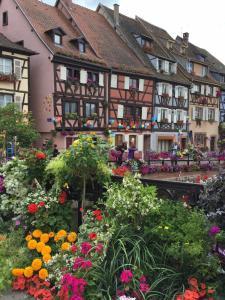 Les Appartements de Home Petite Venise - Colmar