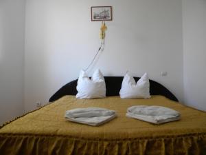 Hotel River, Hotels  Târgu Jiu - big - 16