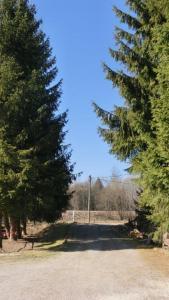 Pension Fohlenhof, Affittacamere  Frauenau - big - 20