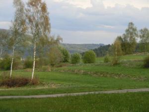 Pension Fohlenhof, Affittacamere  Frauenau - big - 26