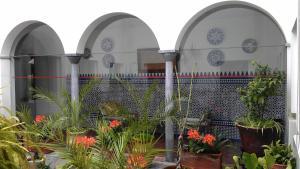 Hotel Maestre, Hotely  Córdoba - big - 42