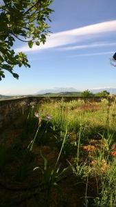 Agriturismo Castelli In Aria - AbcAlberghi.com