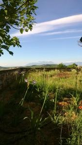 Auberges de jeunesse - Agriturismo Castelli In Aria