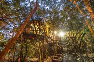 Teniqua Treetops - Buffelsdrif