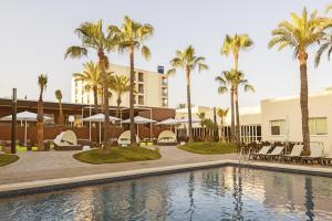 Occidental Ibiza (16 of 48)