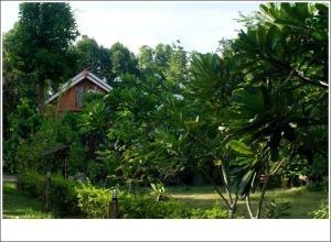 Phuphiangkhiangfah Resort - Ban Huai Kom