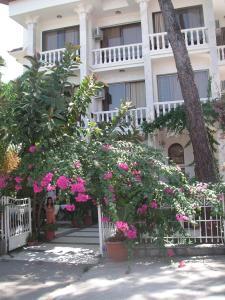 Отель Carikci Hotel, Мармарис